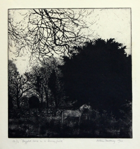 "Arthur Hackney: ""Dappled Horse in a Surrey Field"", 1960; etching and aquatint. $300"