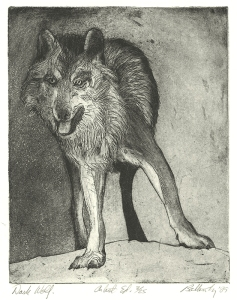 John Nelson Battenberg: Dark Wolf; 1989; etching and aquatint; $350