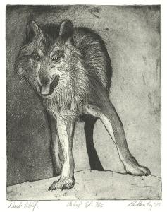 John Nelson Battenberg: Dark Wolf; 1989; etching and aquatint; $350