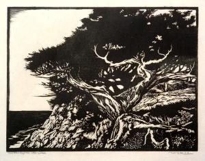 The Fan Cypress–Pt. Lobos
