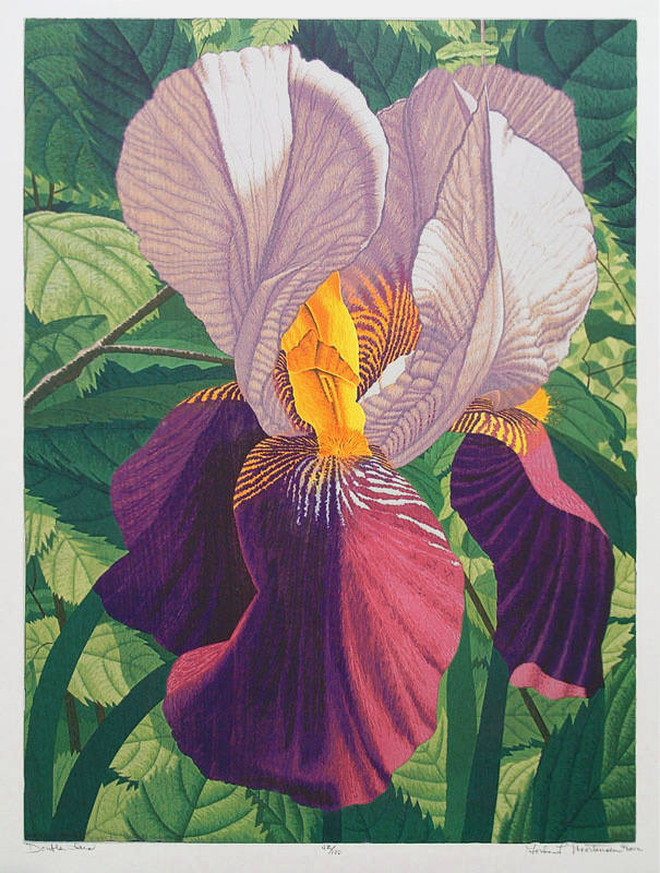 12.  Gordon Mortensen  (American born 1938)  Double Iris