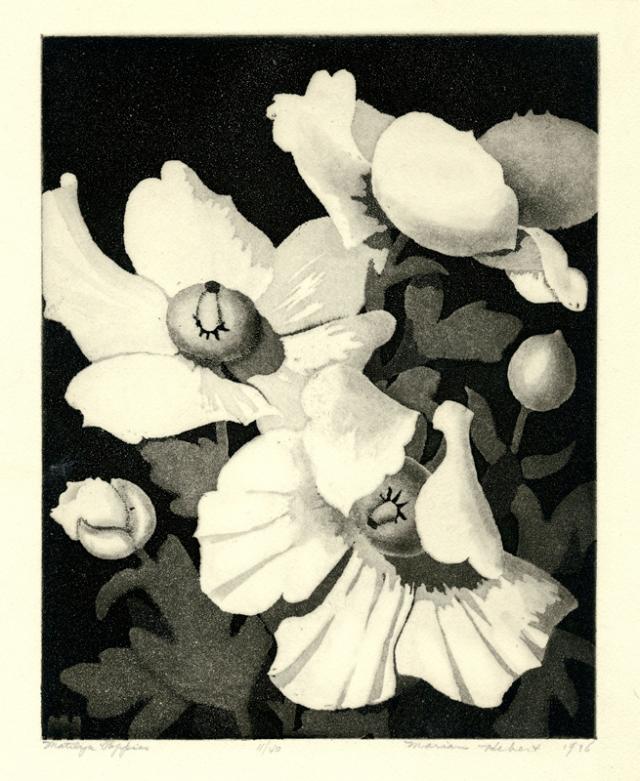 9.  Frances Marian Hebert  (American 1899-1960)  Matilija Poppies