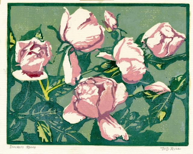 18. William S. Rice  (American 1873-1963)  Duchess Roses