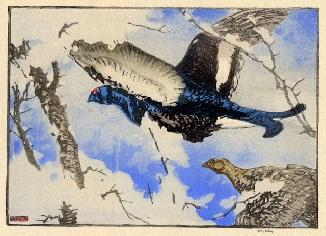 Allen William Seaby (British 1872-1939)  Blackcock and Greyhen, color woodcut, 1924